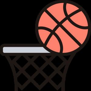 Bola Basket Icon