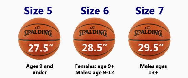 Ukuran Bola Basket